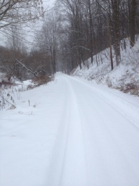 snow_Conrad Lane